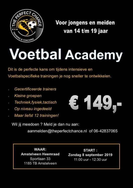 voetbal academy the perfect chance